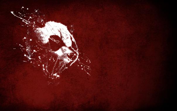 Фото обои красное, белое, Голова, оскал