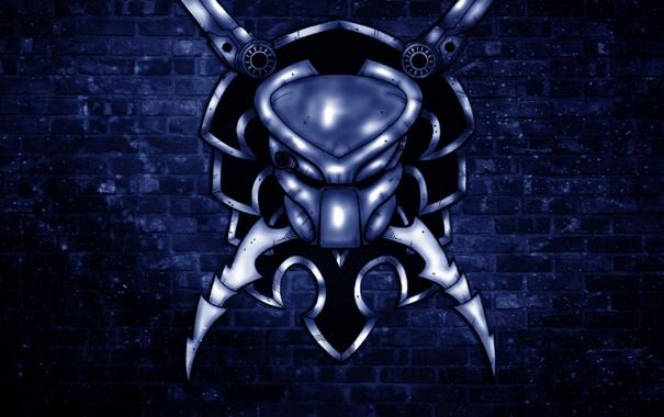 Фото обои стена, хищник, голова, лезвие, синий фон, predator