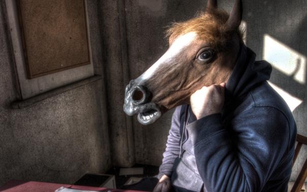Фото обои конь, человек, ситуация