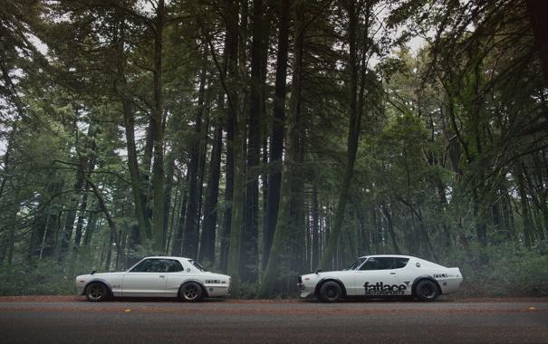 Фото обои дорога, лес, nissan, fatlaceskylines
