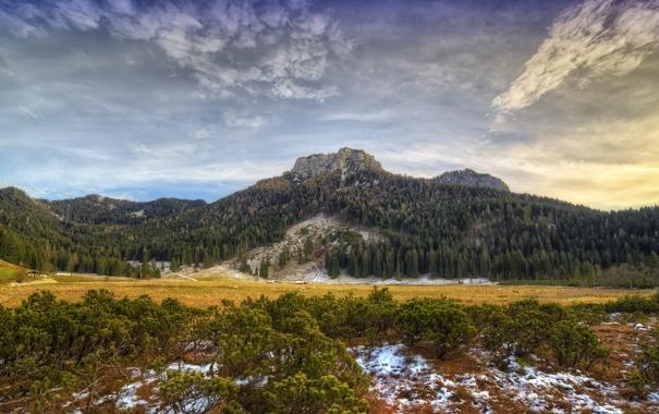 Фото обои зима, лес, природа, гора