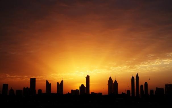 Фото обои небо, лучи, свет, птицы, дома, утро, Дубай