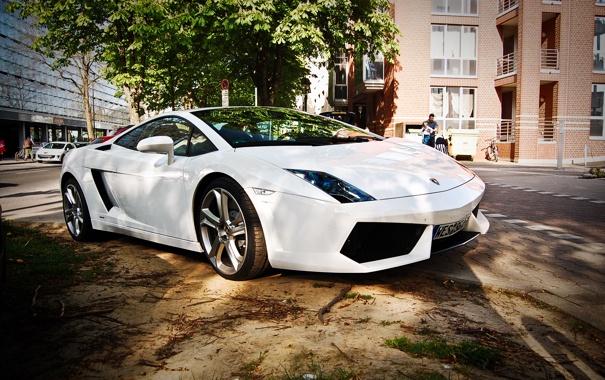 Фото обои Lamborghini, Ламборджини, Gallardo, LP560, Ламборгини, Галардо