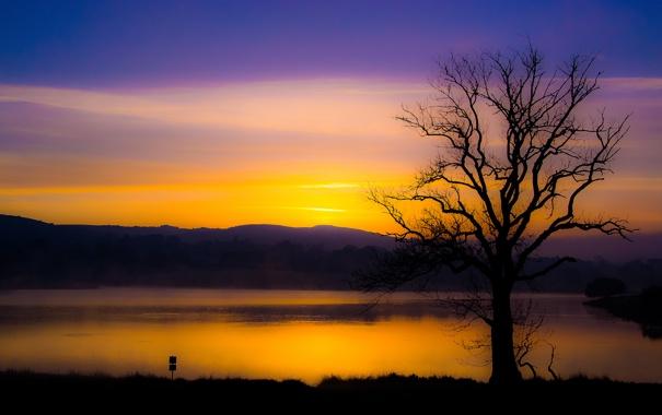 Фото обои небо, горы, озеро, дерево, вечер, зарево