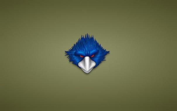 Фото обои птица, минимализм, голова, красные глаза, синяя, белый клюв