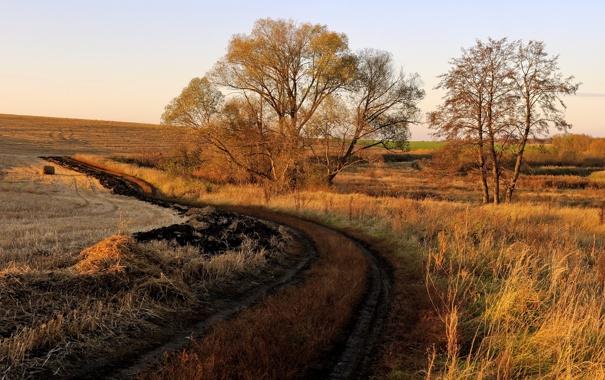 Фото обои закат, поле, дорога