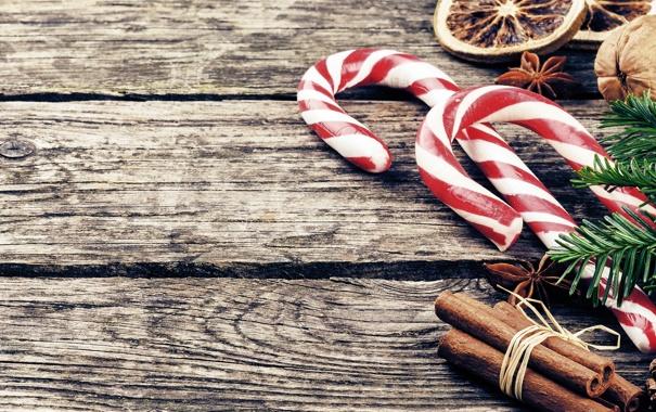 Фото обои зима, ветки, фон, дерево, ель, Новый Год, Рождество