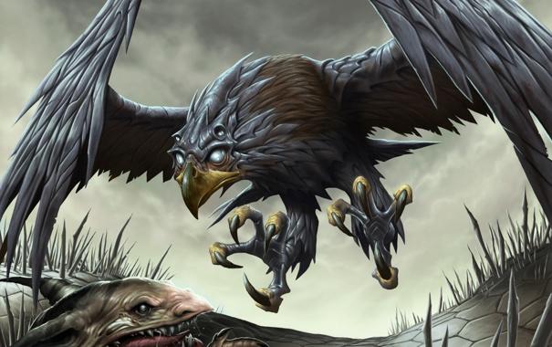 Фото обои крылья, зубы, лапы, клюв, пасть, когти, крыса