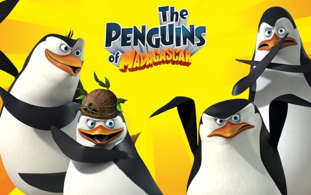 Фото обои игра, The Game, The Penguins of Madagascar, пингвины из мадагаскара
