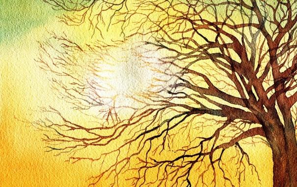 Фото обои свет, дерево, картина, акварель