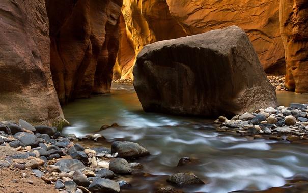 Фото обои река, камни, скалы, каньон, ущелье, Zion National Park, сша