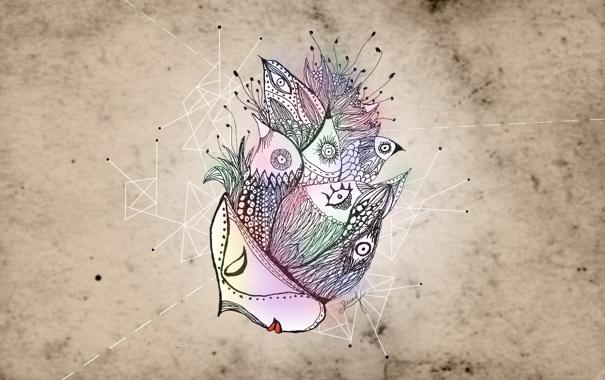 Фото обои глаза, птицы, маска, нестандартность