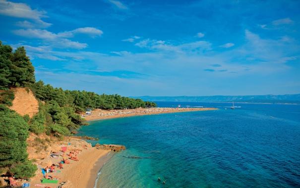 Фото обои море, пляж, деревья, природа, людии