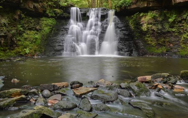 Фото обои лес, река, камни, водопад