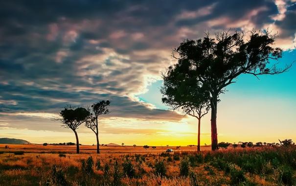 Фото обои небо, облака, деревья, закат, горы, горизонт, саванна