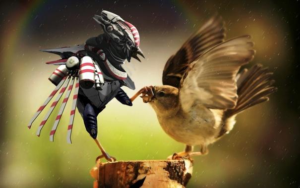 Фото обои птицы, робот, пень, арт, воробей