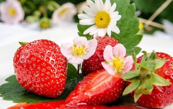 Фото обои листья, цветы, ягоды, клубника, красные, джем, варенье