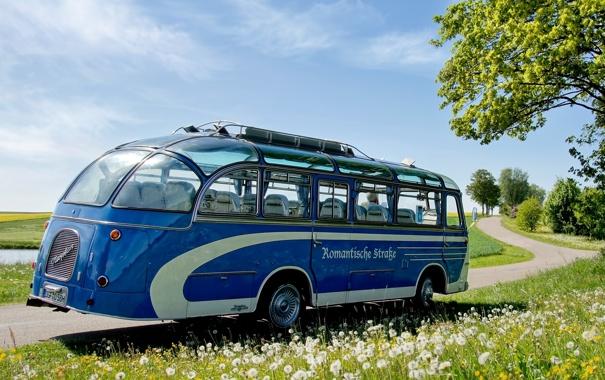 Фото обои дорога, небо, трава, цветы, синий, дерево, автобус