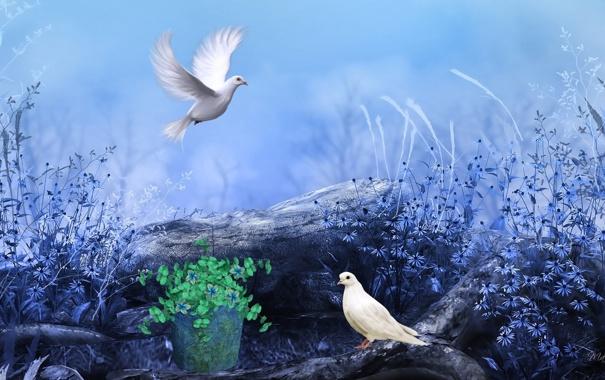 Фото обои цветы, птицы, рисунок, голуби, полевые, полено