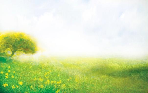 Фото обои лето, трава, цветы, природа, дерево, поляна