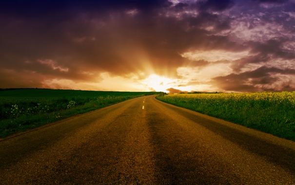 Фото обои дорога, поле, небо, путь, обои, пейзажи, поля