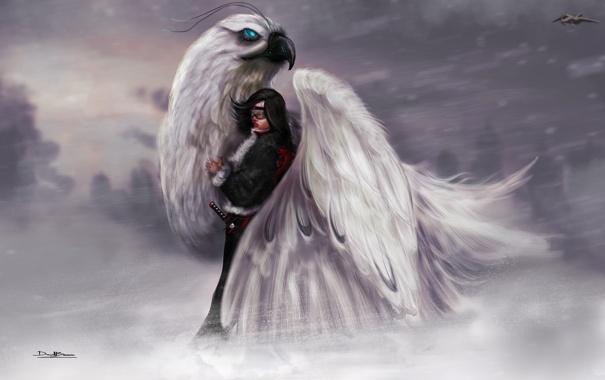 Фото обои зима, девушка, снег, самолет, птица, меч, истребитель
