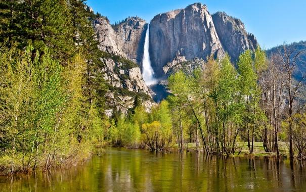 Фото обои лес, река, скалы