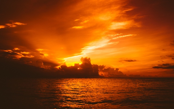 Фото обои море, небо, солнце, облака, восход, горизонт, оранжевое небо