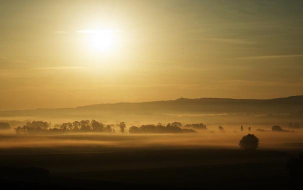 Фото обои солнце, деревья, туман, рассвет, вид, поля, утро