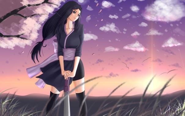 Фото обои трава, облака, птицы, ветер, Девушка, меч, лепестки