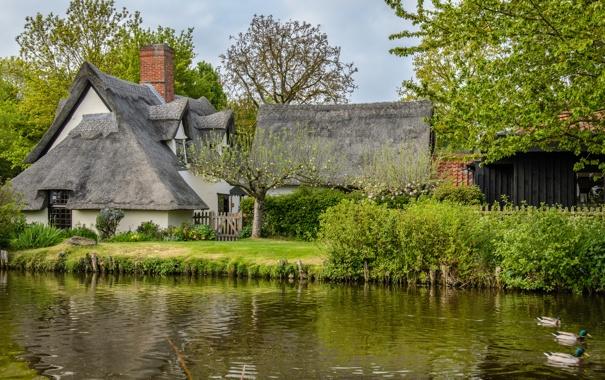 Фото обои деревья, река, Англия, утки, England, соломенной коттедж, Flatford