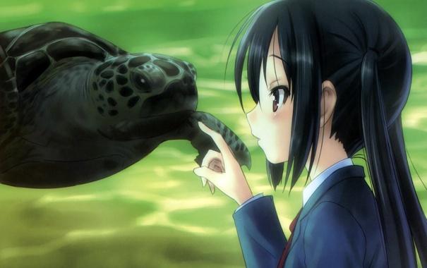 Фото обои аквариум, черепаха, аниме, девочка, океанариум
