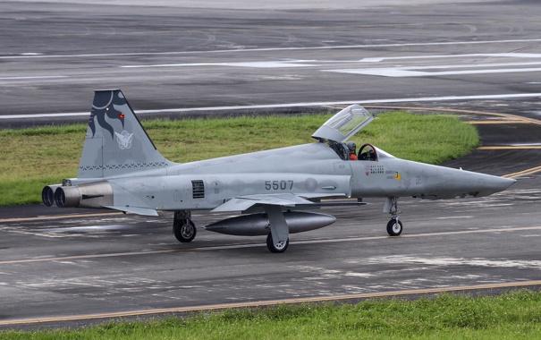 Фото обои истребитель, Tiger, Northrop, многоцелевой, F-5E
