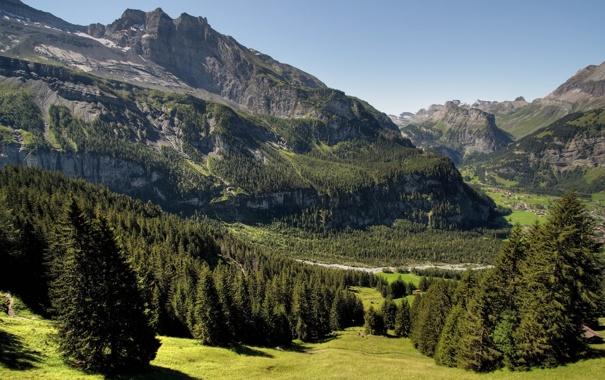 Фото обои summer, grass, trees, mountains, rocks