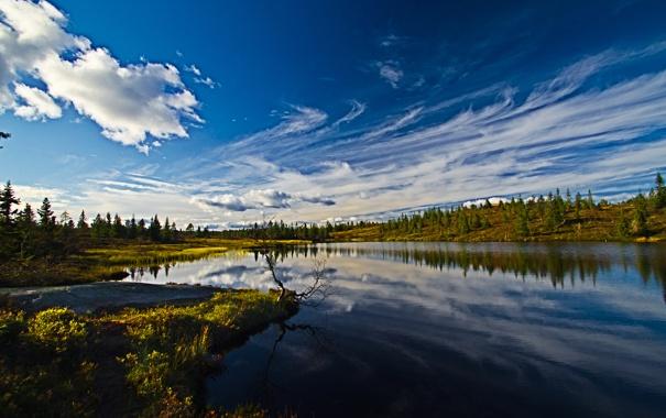 Фото обои лес, небо, облака, река