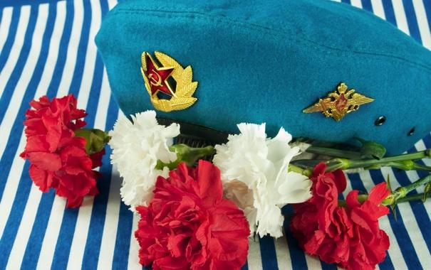 Фото обои цветы, тельняшка, гвоздики, голубой берет, память о службе