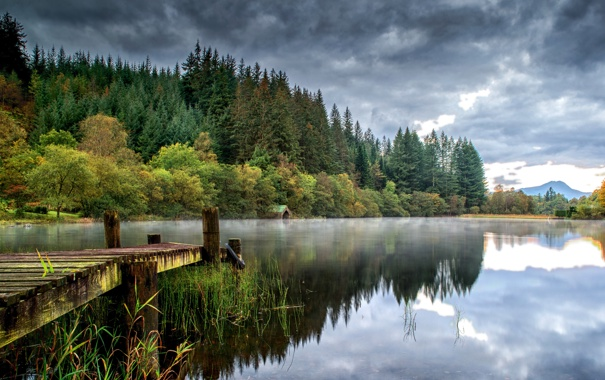 Фото обои лес, вода, деревья, тучи, отражение, река, берег