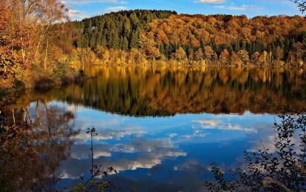 Фото обои осень, лес, небо, деревья, озеро