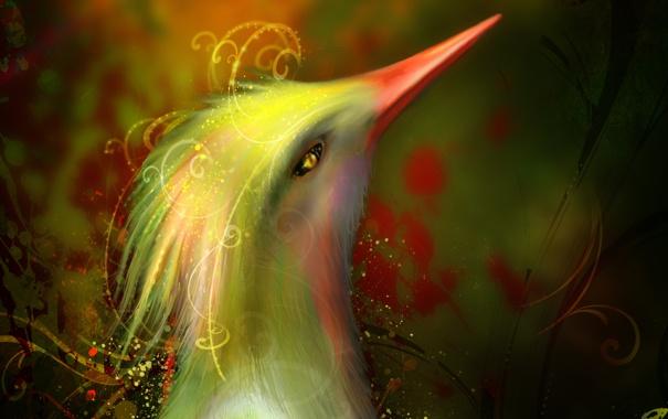 Фото обои взгляд, фантастика, птица, узоры, арт, длинный клюв