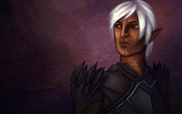 Фото обои эльф, воин, Dragon Age, Fenris