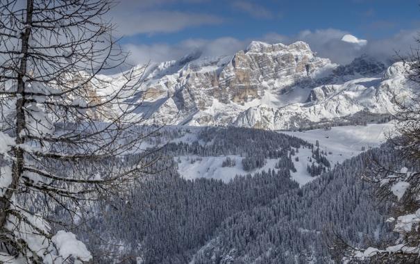 Фото обои зима, лес, горы, дерево, Италия, Italy, Доломитовые Альпы