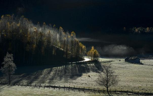 Фото обои дорога, поле, пейзаж, забор, утро