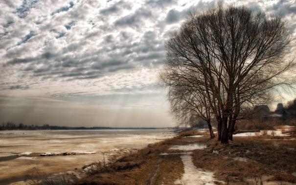 Фото обои деревья, пейзаж, природа, река, весна