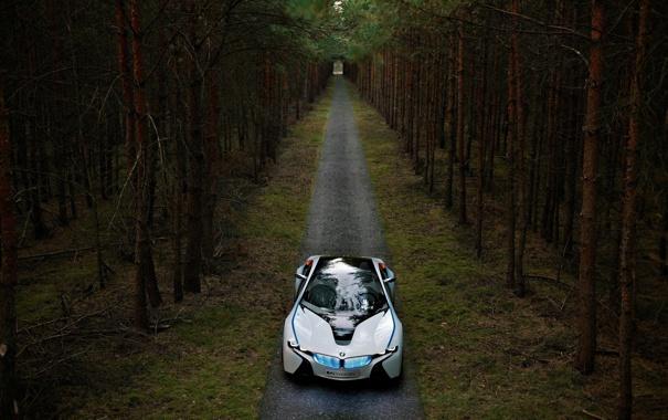 Фото обои дорога, лес, обои, bmw, сосны, прототип, vision
