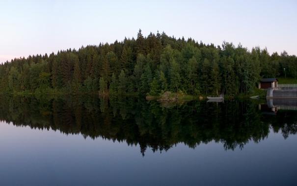 Фото обои вода, деревья, природа, озеро, река, дерево, пейзажи