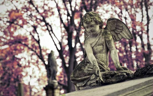 Фото обои ангел, Польша, Polska, Kraków, Краков, Rzeczpospolita Polska, Раковицкое кладбище