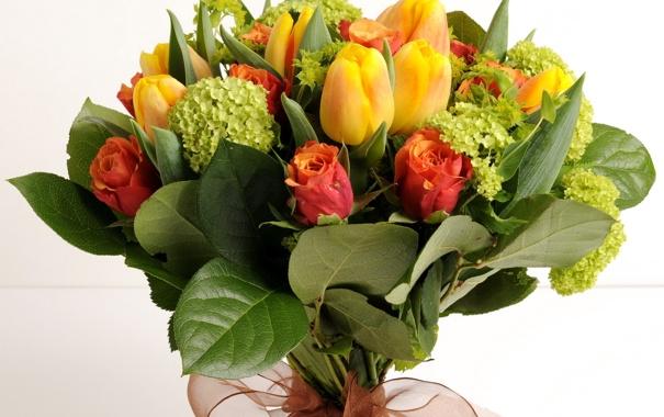 Фото обои цветок, цветы, розы, букет, тюльпаны, красивые