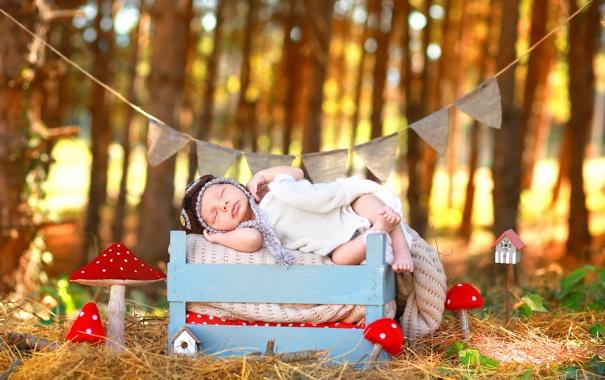 Фото обои осень, ящик, младенец