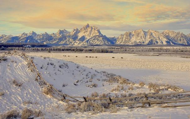 Фото обои зима, поле, снег, пейзаж, горы, фото, фон