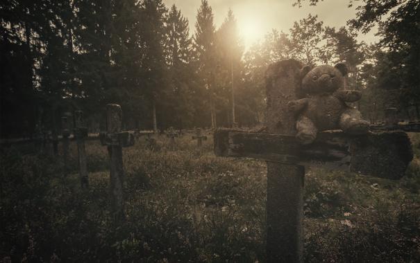 Фото обои кладбище, мишка, кресты